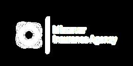 Lifesaver Logo