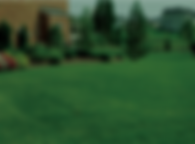 RESOURCES Lawn.png