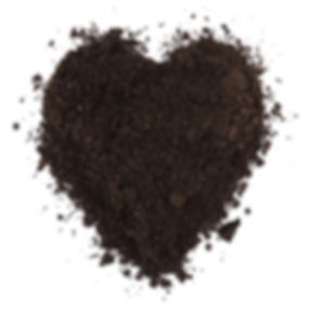 184882476-1024x1024 heart.png