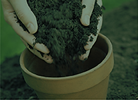 RESOURCES Soil.png