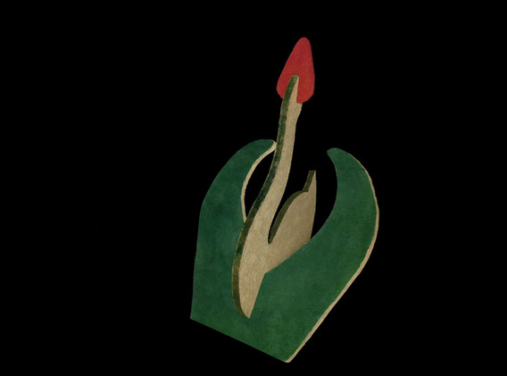 tulppaanijoutsen2.jpg