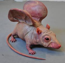 Ears Mouse, 2012