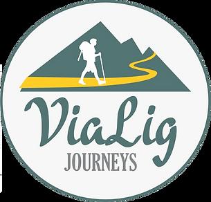 vialig-logo.png