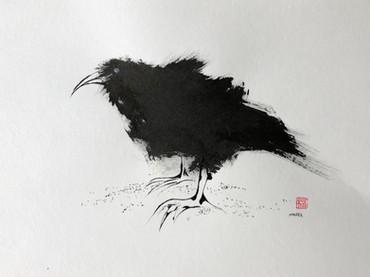 Raven series