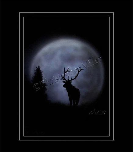 Moon Buck