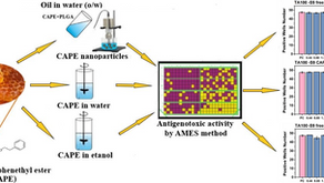 Assessment of the antigenotoxic activity of poly(d,l lactic-co-glycolic acid)