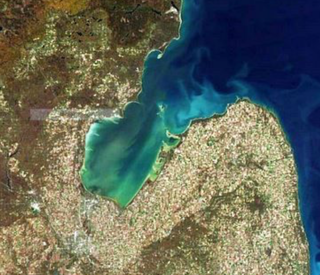 Walleye Charter: Saginaw Bay