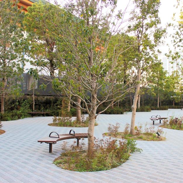 Small park behind Kokugikan
