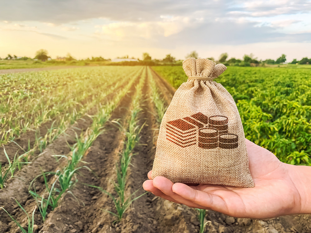 money bag in front of agricultural farm