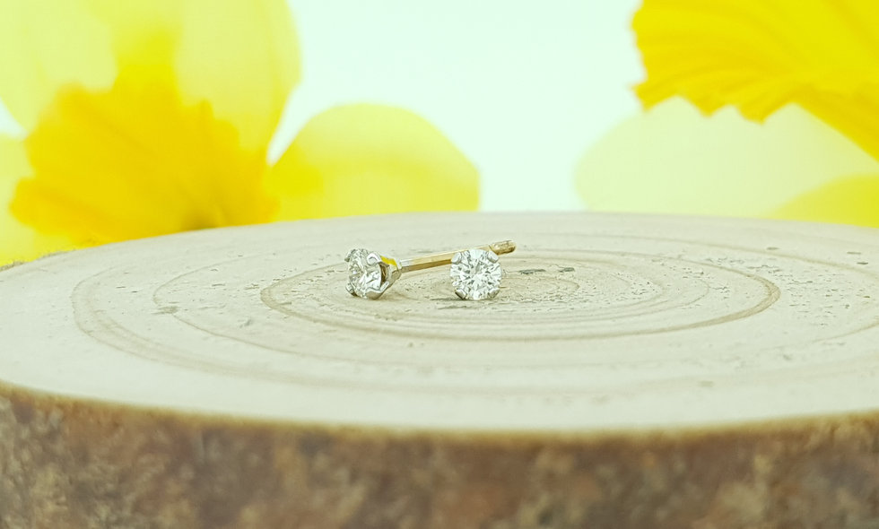 9ct White and Yellow Gold 0.16ct Diamond Stud Earrings