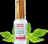nano-soma-leaf.png