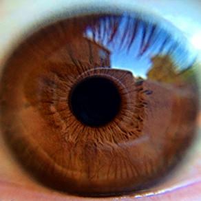 Acu kontakts aktivizē autonomo nervu sistēmu pat videozvanu laikā