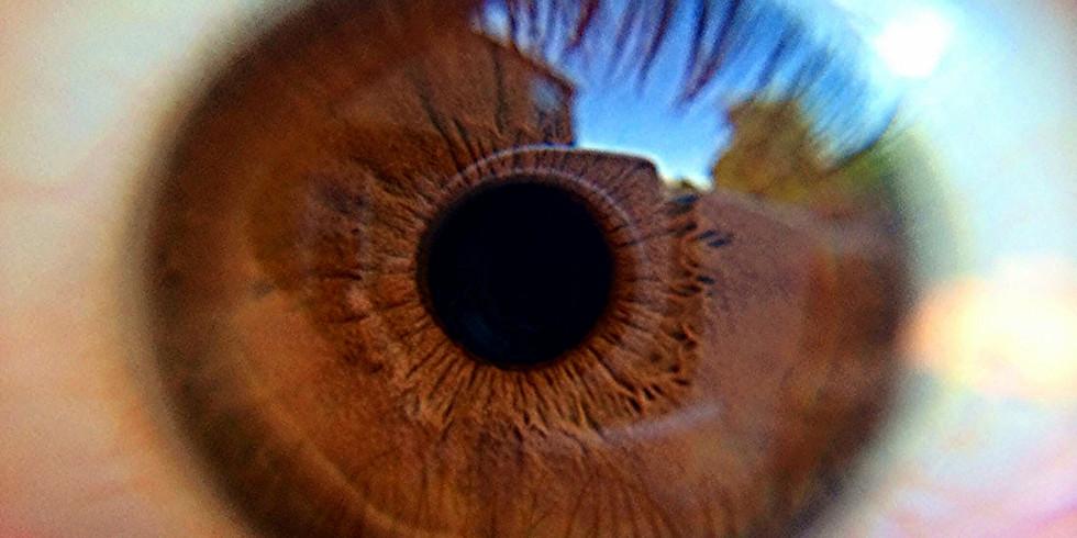 Understanding Cataract and Diabetic Retinopathy in Singapore
