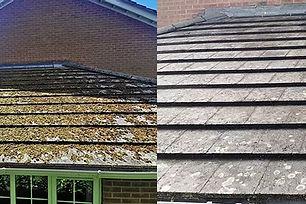 roof soft wash.jpg