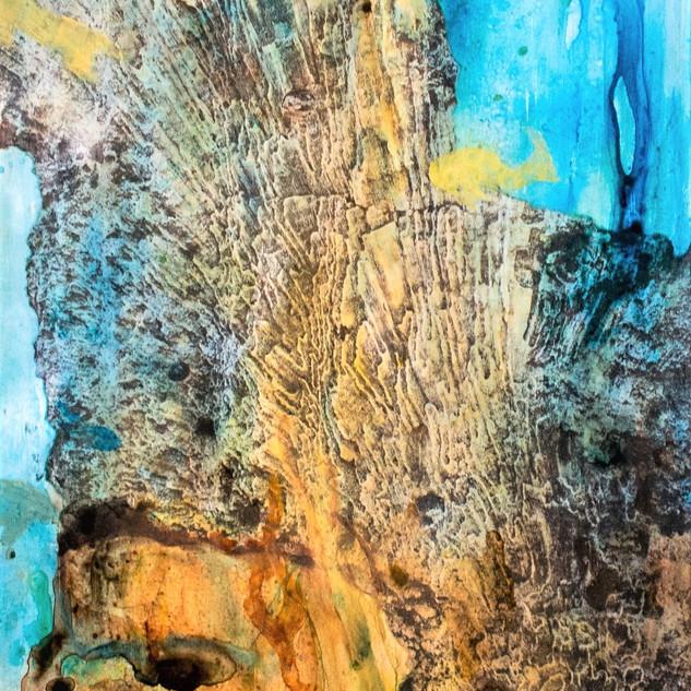 Corales Fosilizado #4