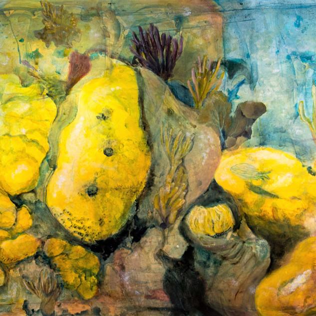 El Arrecife de Cayo Largo