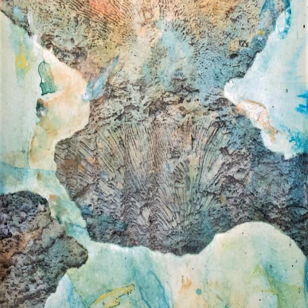Corales Fosilizado #6