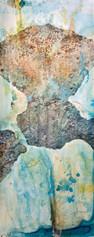 Corales Fosilizado 6.jpg