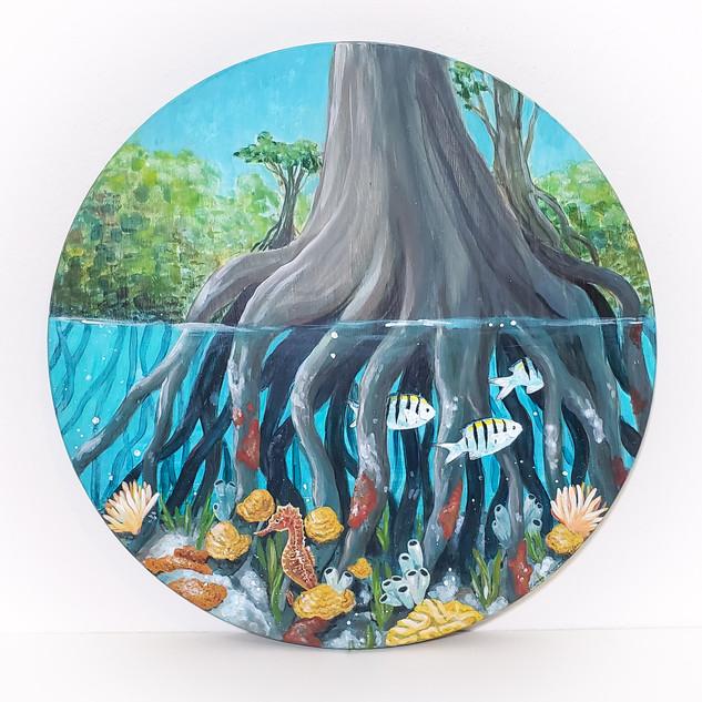 """Mangrove Nursery"" 17"" Diameter Acrylic on Wood Panel 2020  $250"