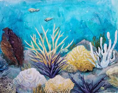 Dying Reef.jpg