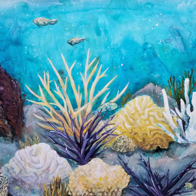 Dying Reef