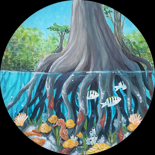 """Mangrove Nursery"" 17"" Diameter Acrylic on Wood Panel 2020  $450"