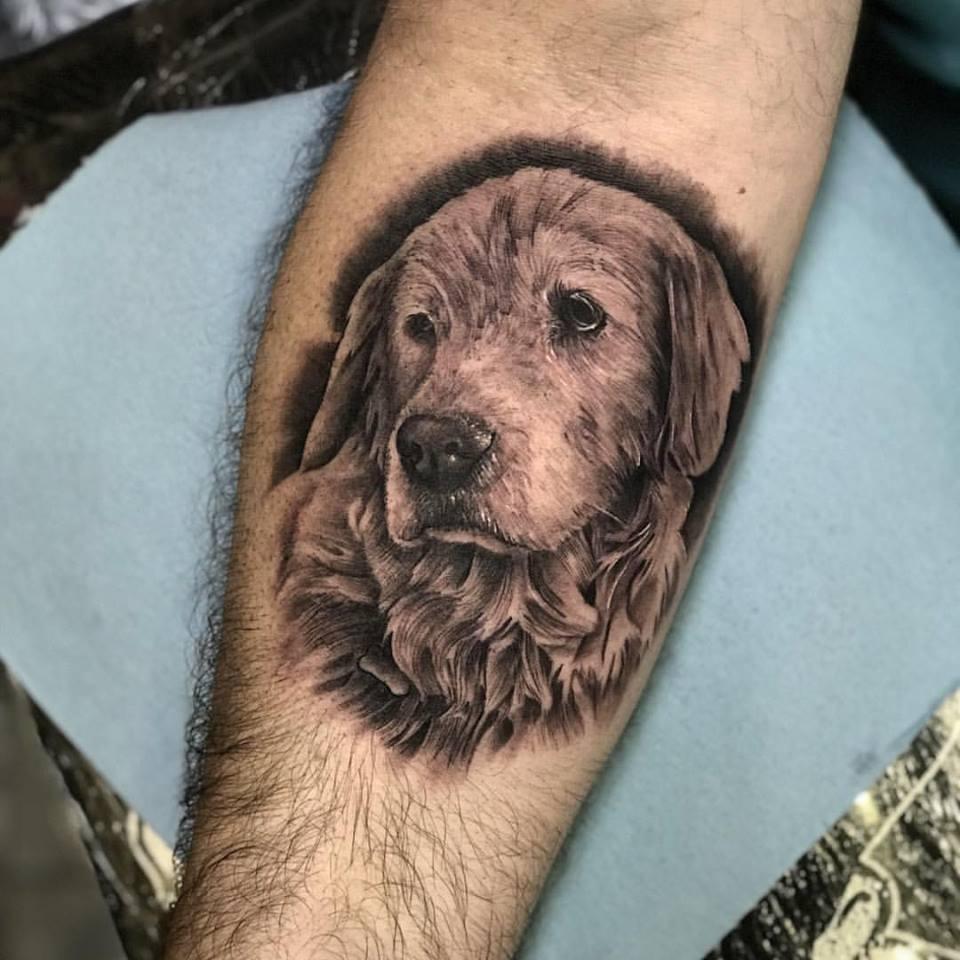 care dog