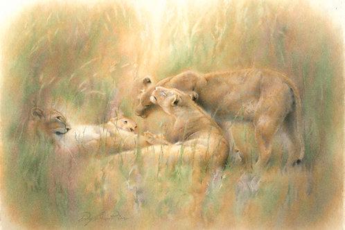 Okavango Harmony (study)