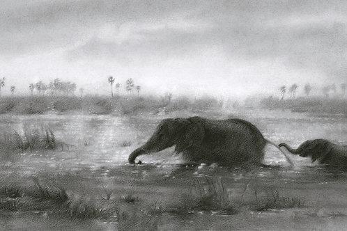 Zambezi Sanctuary