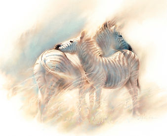 Pierce, Zululand zebras small-2 copy.jpg