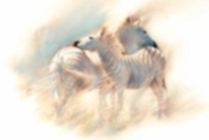 Pierce, Zululand zebras small-2 copy_edi