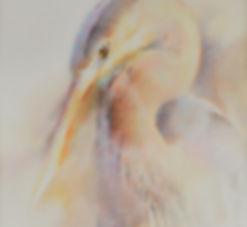 Watercolor Blue Heron.jpg