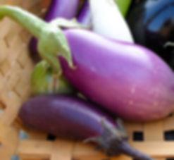 eggplant.323111158-2.jpg