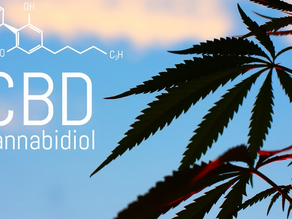 What Is the Difference Between Full Spectrum, Broad Spectrum and Isolate CBD?