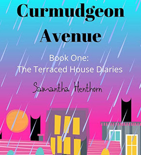 The Terraced House Diaries:Curmudgeon Avenue, Book 1