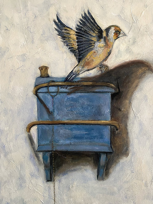 """""""Goldfinch, released"""""""