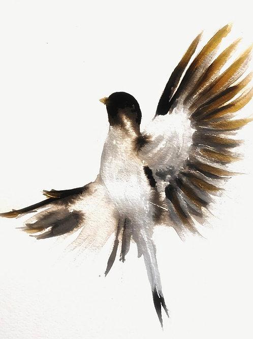 """I'm a bird"""