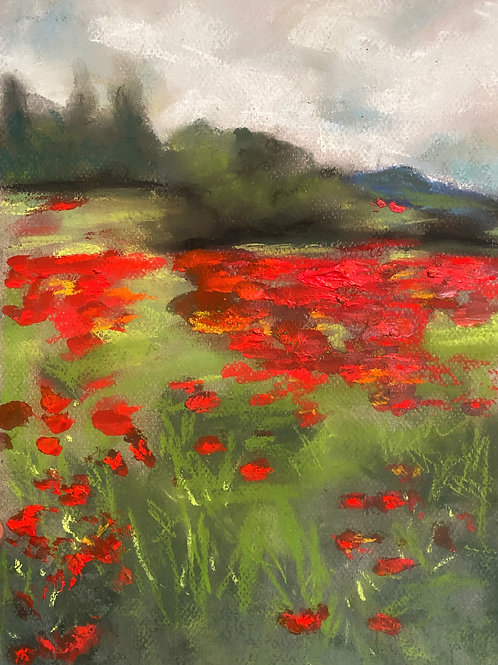 """""""Field of Poppies"""""""