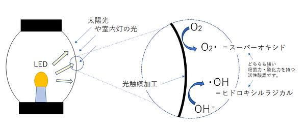 光触媒の原理.png