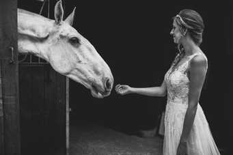 Cardiff bride with white horse