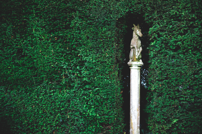 Miskin Manor Garden