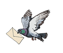 pigeon for web.png