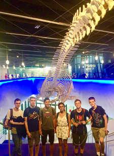 סיור מדעי במוזאון הטבע בברצלונה