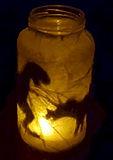 Lighted Dinosaur Silhouette Jar