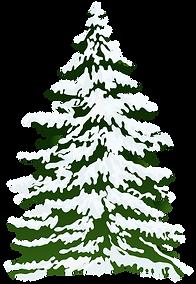 Snowy Pine Tree Clipart