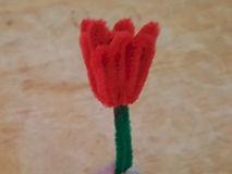 Chenille Stem Tulip