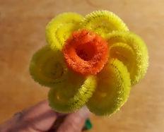 Pipe Cleaner Daffodil