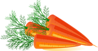 Carrot Clipart PNG