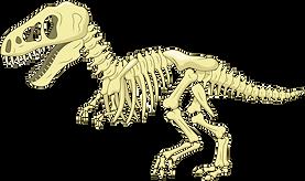 FREE Dinosaur Skeleton SVG and PNG Files