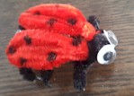 Pipe Cleaner Lady Bug